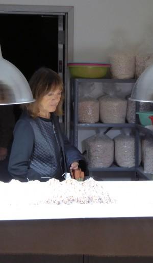 Anne aux perles-1
