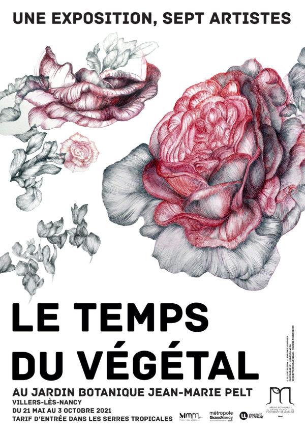 Exposition collective Le temps du végétal